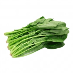 菠菜500g