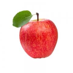 六盘山苹果