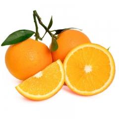 17.5°橙子