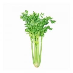 芹菜1kg