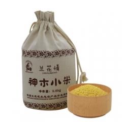 兰花情神木小米1.5kg